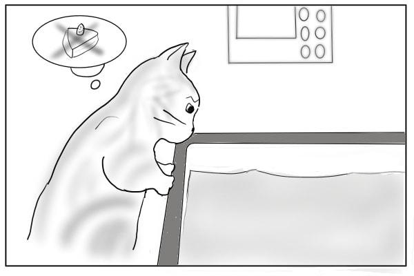 湯船を覗きこむ猫