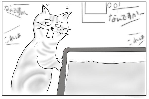 思考停止する猫