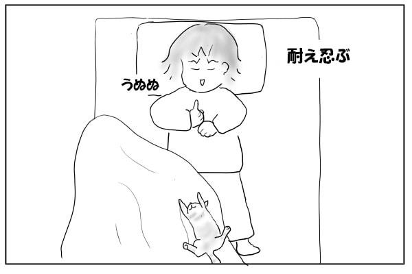 足元で寝る猫2