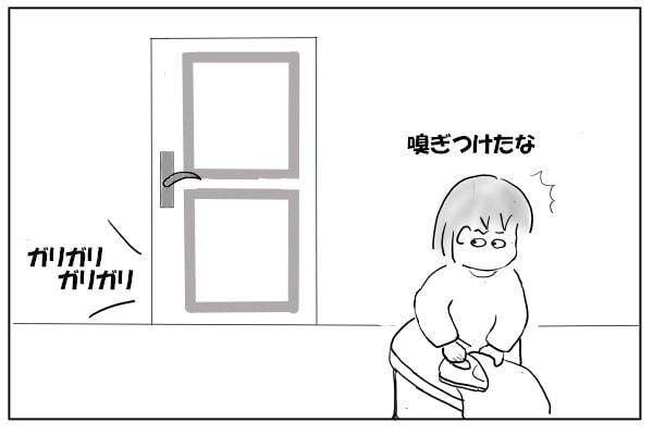 ドアの外に猫がいる1