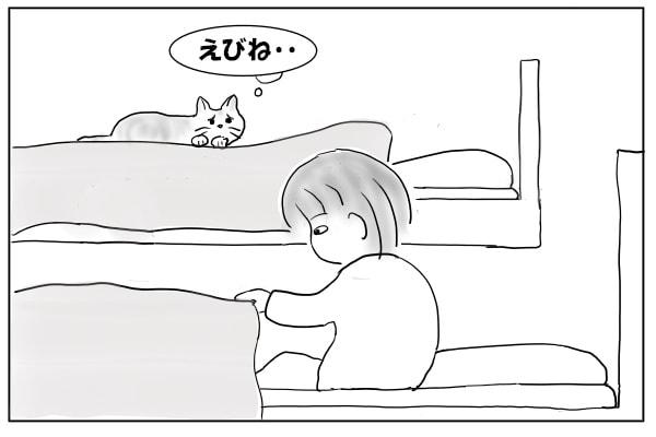 悲しそうにこっちを見る猫