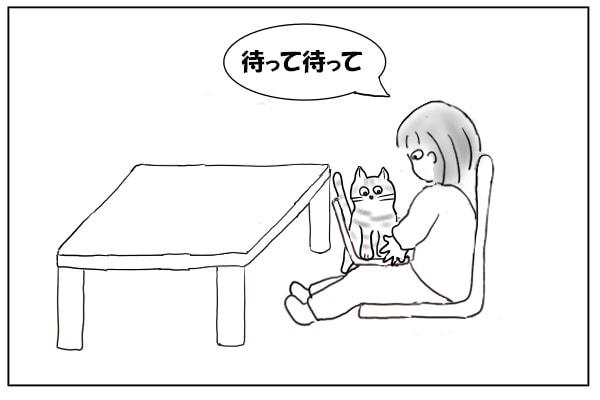 猫を制止する