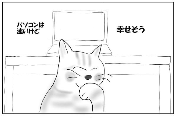 猫の幸せそうな顔