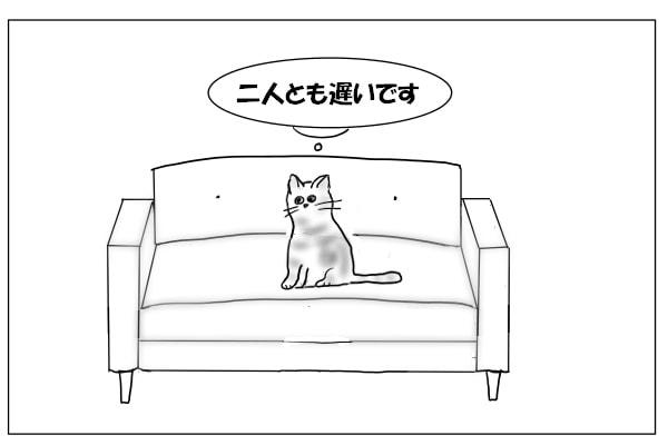 飼い主の帰りを待つ猫