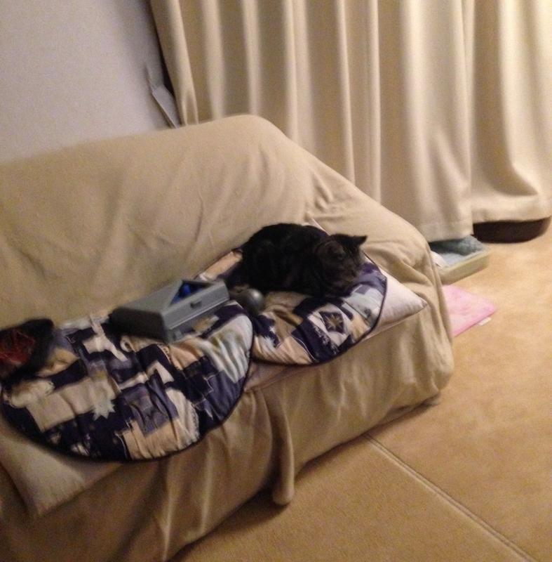 ソファの上で