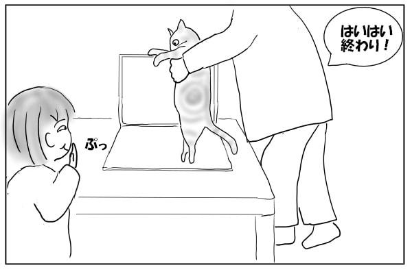 どかされる猫
