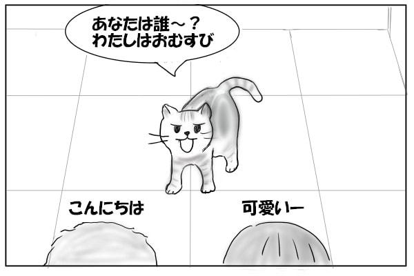出迎える猫
