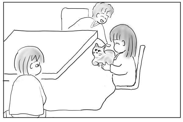 膝に乗った猫