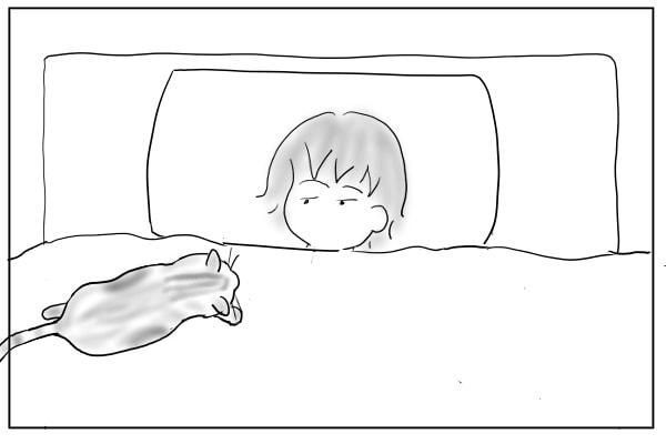 ふとんを歩く猫
