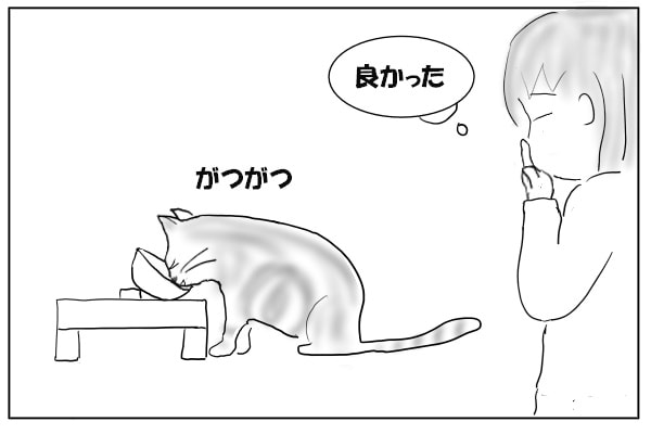 がつがつと食べる猫