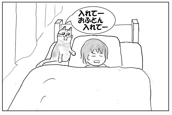 ふとんにいれてほしい猫