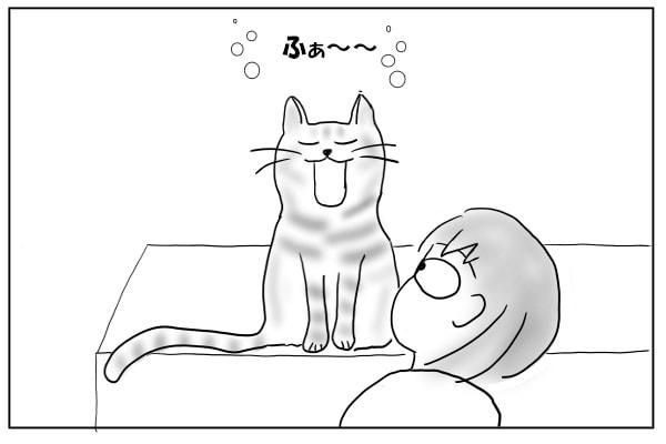 猫の口の中を覗く