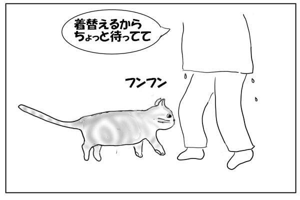 足にまとわりつく猫