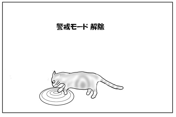 足を乗せる猫