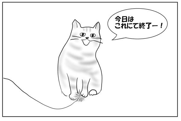 休みたい猫