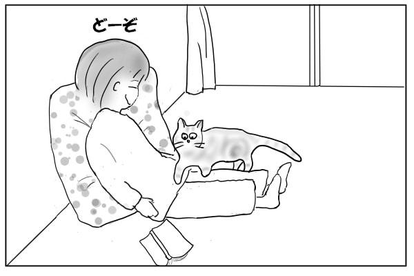 猫を膝に乗せる