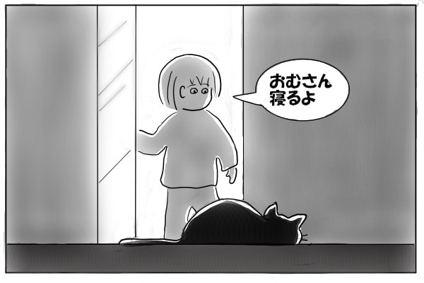 猫を迎えにいく
