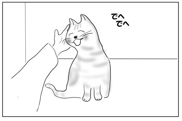 ゴロゴロ甘える猫