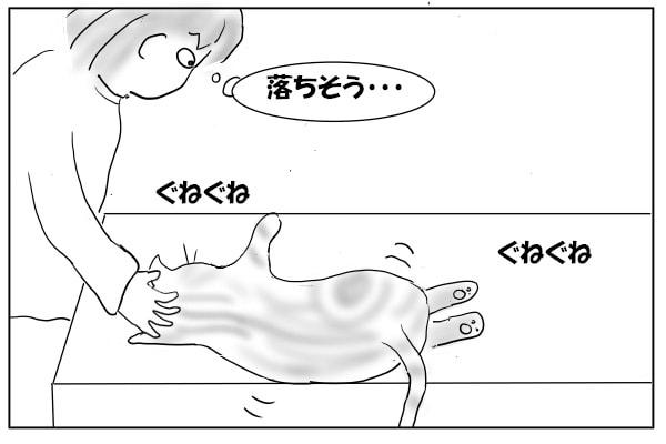 落ちそうになる猫