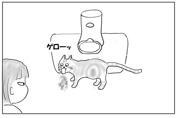いきなり吐く猫