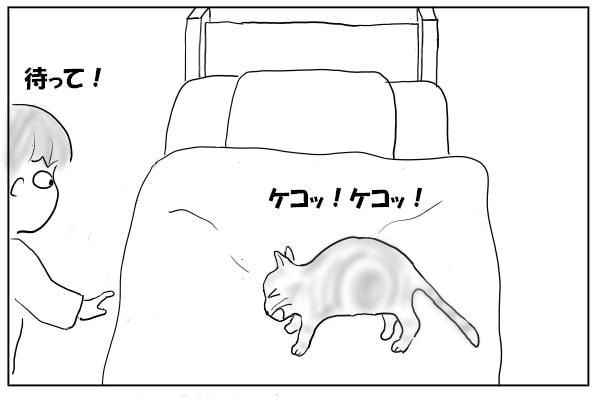 苦しそうな猫