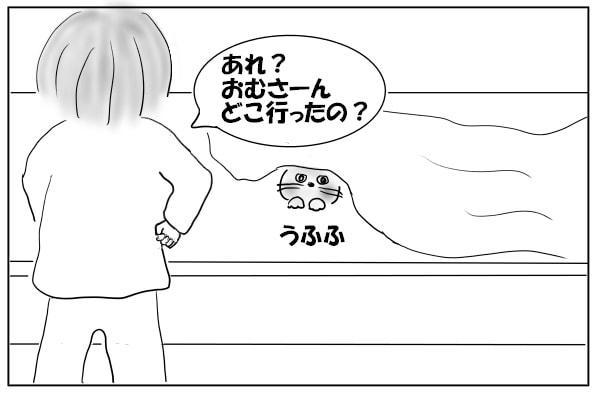 猫とかくれんぼ1