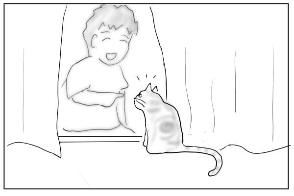 猫にちょっかいを出す