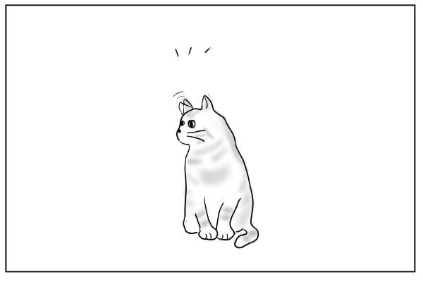 動く猫の耳