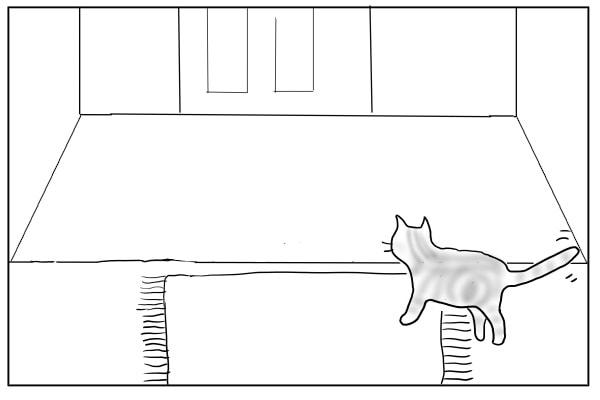 玄関へ移動する猫