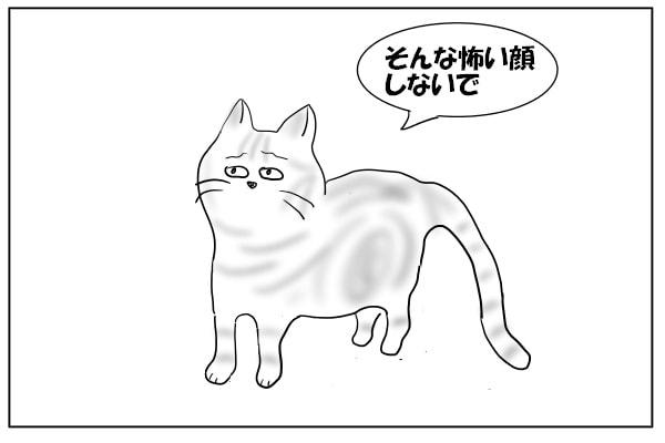 しょげる猫