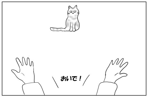 おいで、と手を広げる