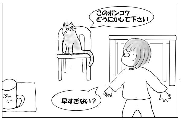 座っている猫を目撃