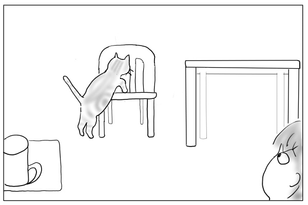 椅子に登る猫