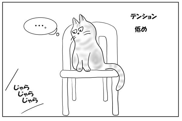 テンション低いネコ