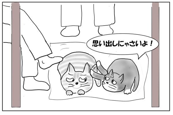 手を出すメス猫
