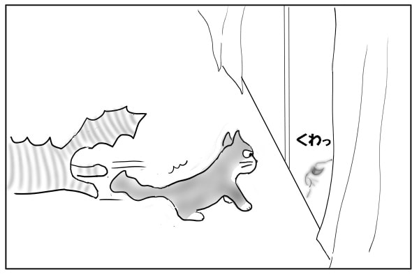 逃げ出す猫