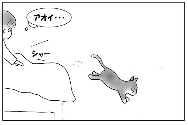 ベッドから降りる猫