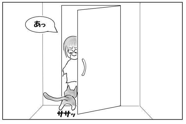 トイレにするりと入る猫