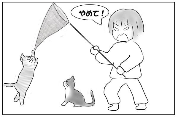 虫取り網をオモチャにする猫