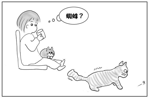 へっぴり腰の猫