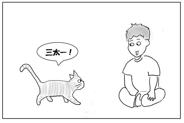 甘えん坊猫