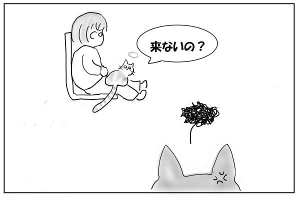 おいで、と言う猫
