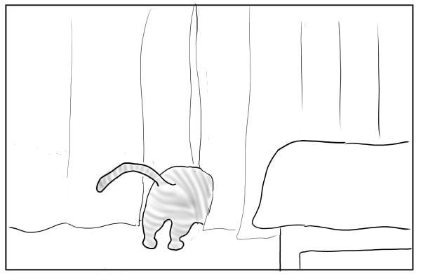 豆苗を盗み食う猫