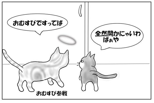 ドアを開けられない猫