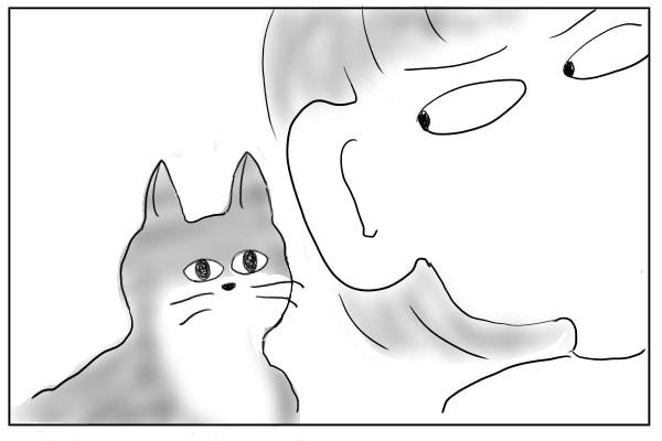 耳を猫に近づける