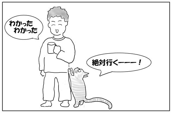 だだをこねる猫