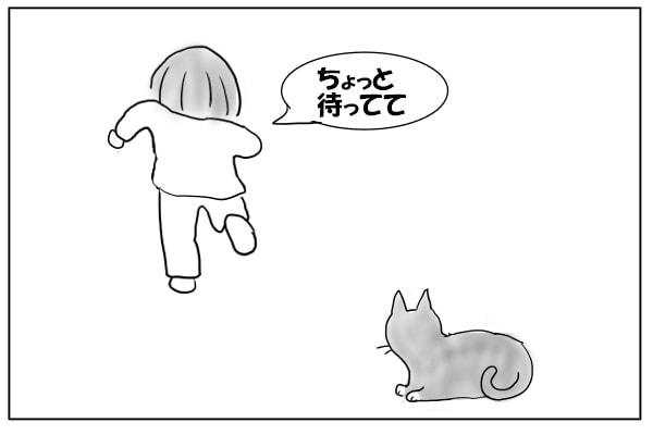猫のために走る女