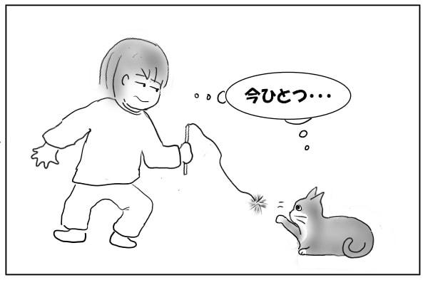 乗り気でない猫