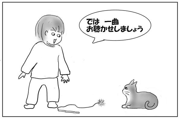 猫を喜ばせるために