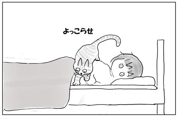 体からおりる猫